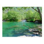Emerald Peace Postcard