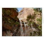 Emerald Pool Falls I from Zion National Park Card