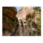 Emerald Pool Falls I from Zion National Park Postcard