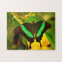 Emerald Swallowtail Butterfly. Jigsaw Puzzle