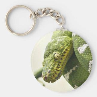 Emerald tree boa constrictor keychain