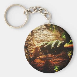 Emerald Tree Boa // Corallus caninus Keychain