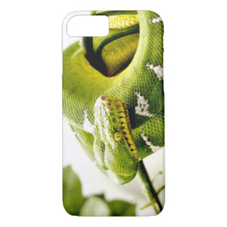Emerald Tree Boa iPhone 8/7 Case
