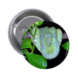 Emerald Tree Boa-Morticia Button