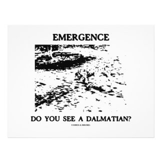 """Emergence Do You See A Dalmatian? 8.5"""" X 11"""" Flyer"""