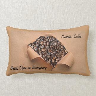 Emergency Stash Coffee Pillow