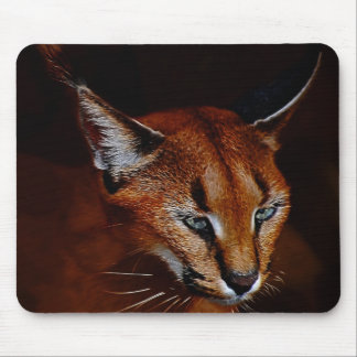 Emerging Mouse Pad