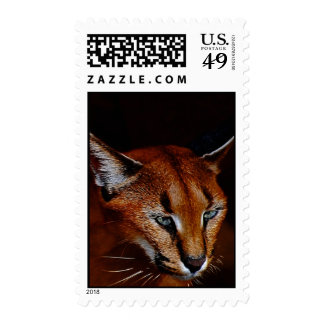 Emerging Postage Stamps