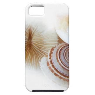 Emerging Shells iPhone 5 Case