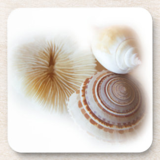 Emerging Shells Drink Coaster