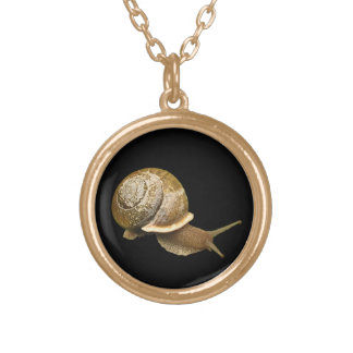 Emerging Snail Gold Plated Necklace