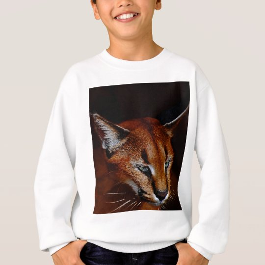 Emerging Sweatshirt