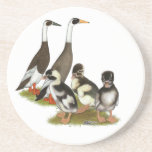 Emery Penciled Runner Duck Family Coasters