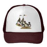Emery Penciled Runner Duck Family Hat