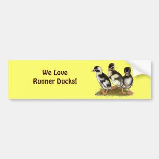 Emery Penciled Runner Ducklings Car Bumper Sticker