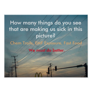 EMF exposure, Chem Trails, Processed Food Poster