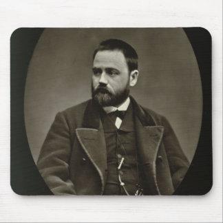 Emile Zola (1840-1902) de 'Galerie Contemporaine Tapete De Ratones