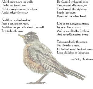 "Emily Dickinson ""In the Garden"" Poem Postcard"