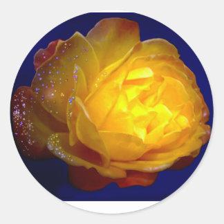 Emily Winter copy.jpg  Rain Drops Rose Classic Round Sticker
