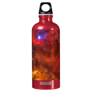 Emission Nebula NGC 2467 in Constellation Puppis SIGG Traveler 0.6L Water Bottle