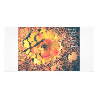 Emlightment Card