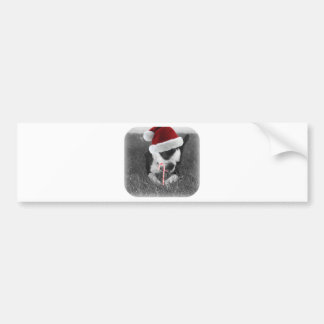 emma and candy cane santa hat christmas bumper stickers
