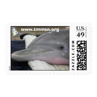 Emma at TMMSN Stamps