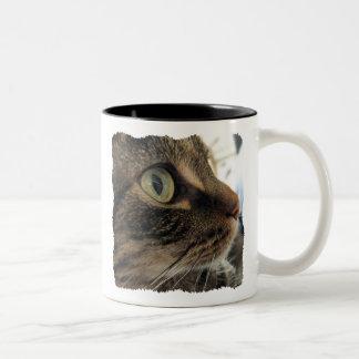 Emma Close-Up Cat Photo Coffee Mug #1