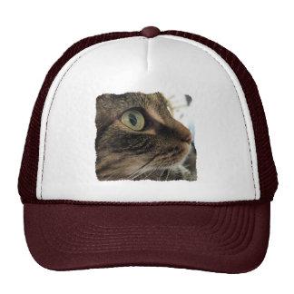 Emma Close-Up Cat Photo Hat
