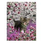 Emma en flores I - pequeño gato gris del gatito Postales
