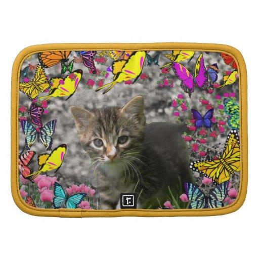 Emma in Butterflies I - Gray Tabby Kitten Organizers
