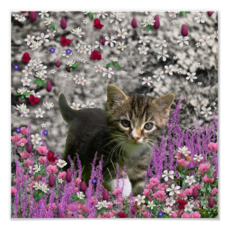 Emma in Flowers I – Little Gray Kitty Cat Poster