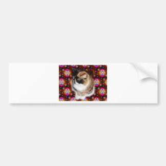 Emma the Cat on Wrapping Paper.jpg Bumper Sticker