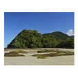 Emmagen Beach, Daintree National Park (UNESCO 2 Postcards