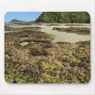 Emmagen Beach, Daintree National Park (UNESCO Mouse Pad