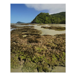 Emmagen Beach, Daintree National Park (UNESCO Poster