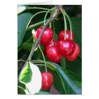Emmett Cherries Card