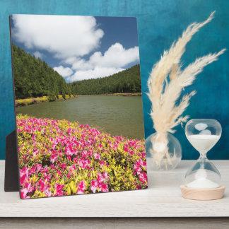 Empadadas Lakes, Azores Plaque