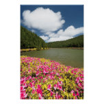 Empadadas Lakes, Azores Posters