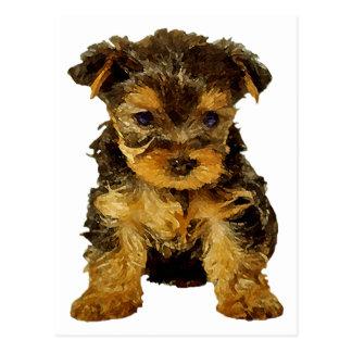 Empanada de Cutie, perrito de Yorkie Postal