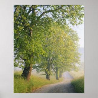 Empañe el camino cubierto, ensenada de Cades, gran Impresiones