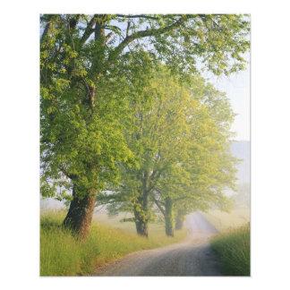 Empañe el camino cubierto ensenada de Cades gran Fotografia