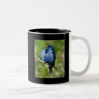 Empavesado de añil 1, caliente todo el pájaro taza de café de dos colores