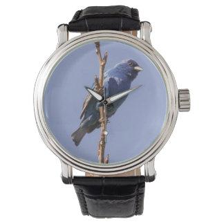 Empavesado de añil relojes de pulsera