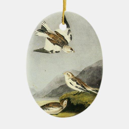 Empavesado de nieve - John James Audubon Adorno Ovalado De Cerámica