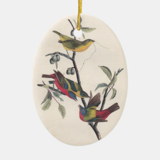 Empavesado pintado Audubon antiguo Adorno