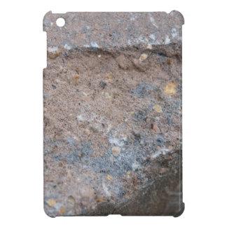 Empedrado iPad Mini Cárcasas