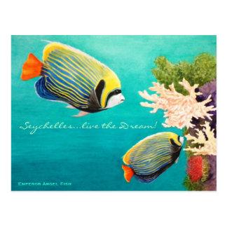 Emperor Angel Postcard