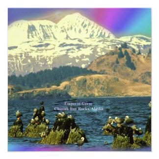 Emperor Geese on Chiniak Bay near Chiniak, Alaska Card