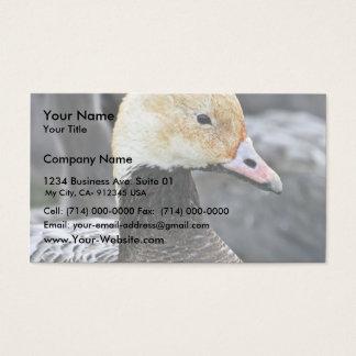 Emperor Goose Business Card